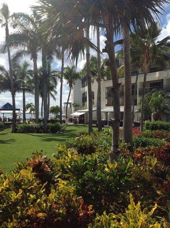 Flamingo Beach Resort: The court yard