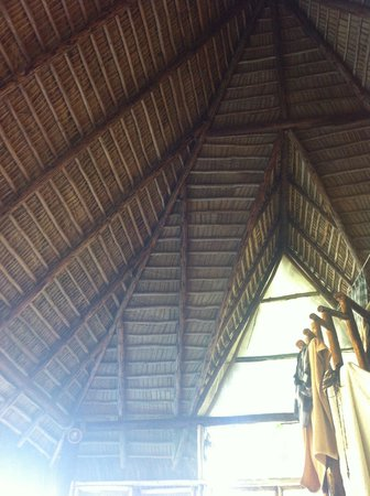 Cabarete Maravilla Eco Lodge & Beach: thatched roof