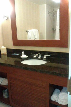 Hilton Tampa Downtown: Bathroom