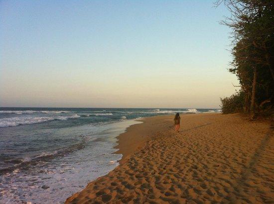 Cabarete Maravilla Eco Lodge & Beach: beach