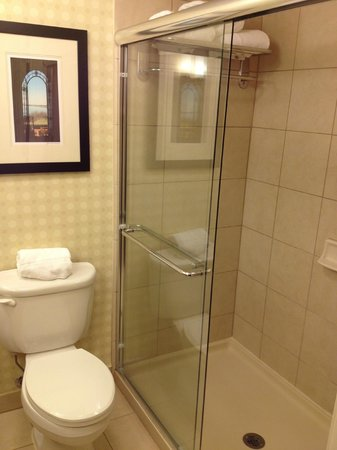 Hilton Garden Inn Melville: The bathroom/shower