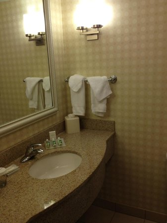 Hilton Garden Inn Melville: The bathroom/sink