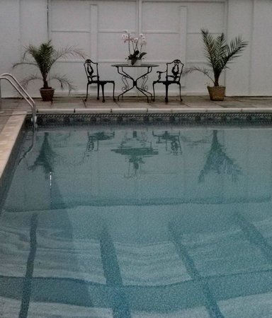 Delamore House : Swimming Pool in Summer