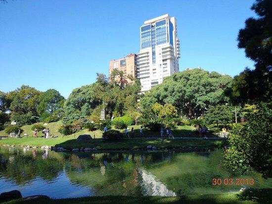Contraste entre parque y edificios modernos fotografía de Jardin