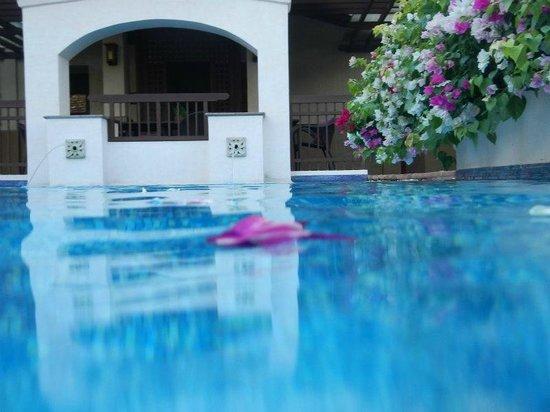 Shangri-La's Mactan Resort & Spa: チースパのメインプール。花びらが散って、綺麗でした。