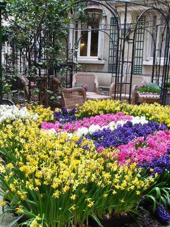 Hotel Nicolo: The garden