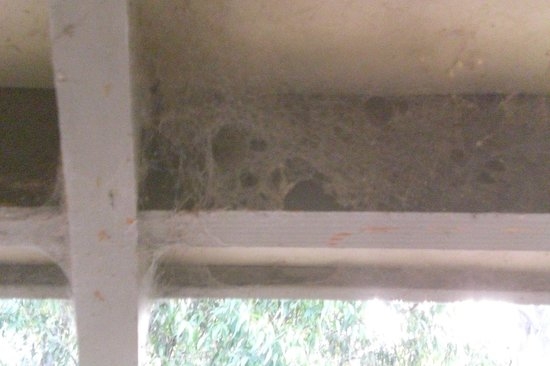 Cypress Lakes Resort By Oaks Hotels & Resorts: Cobwebs in windows and eaves