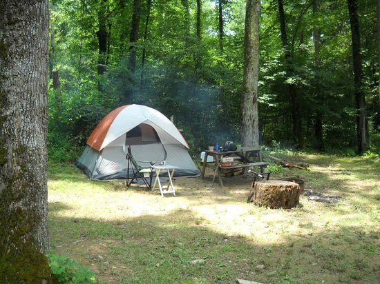 Catawba Falls Campground: Site T3