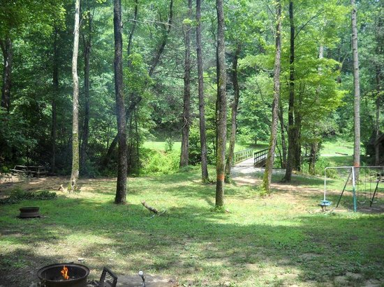 Catawba Falls Campground: Campsite view