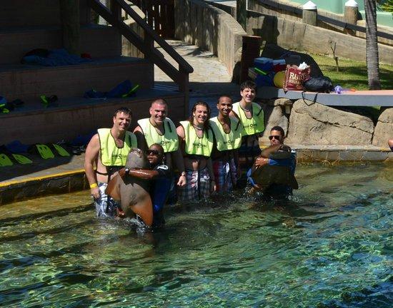 The Tropical at Lifestyle Holidays Vacation Resort: Shark encounter at Ocean World