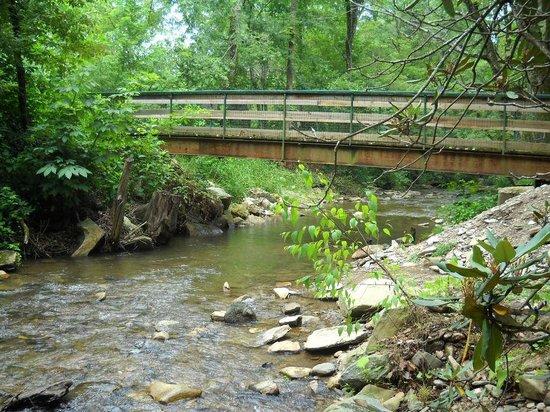Catawba Falls Campground: Bridge to primitive sites