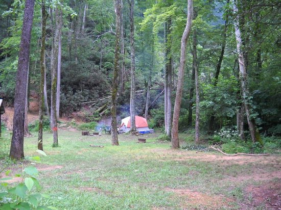 Catawba Falls Campground: Campsite view to site T3