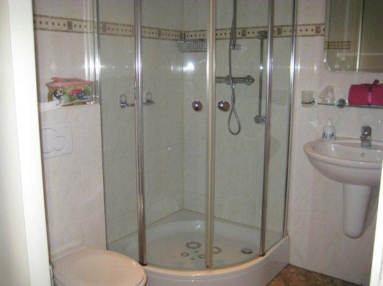 De Witte Hoeve Hotel - room photo 4918961