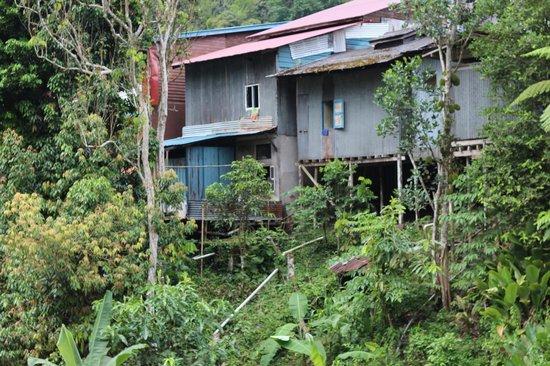 Bidayuh Annah Rais Longhouse Homestay: village