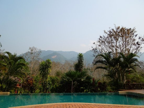 Hillside - Nature Lifestyle Lodge: View of pool from patio