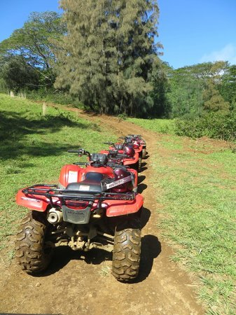 ATV Outfitters Hawaii: Resting