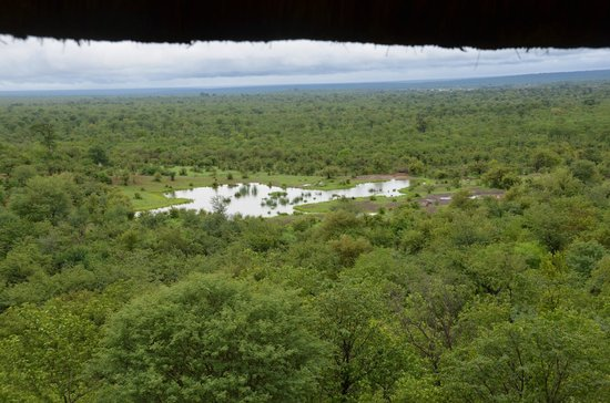 Victoria Falls Safari Lodge: Water Hole