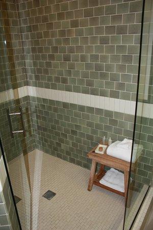Hotel Indigo Asheville Downtown: Shower