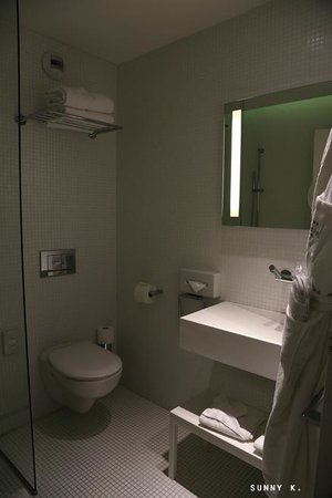 Grand Hotel Grenoble Centre: the tiny glass wall separates the shower area from the rest of the bathroom, not quite effective