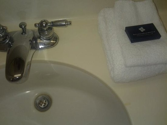 Extended Stay America - Savannah - Midtown: hair on towels