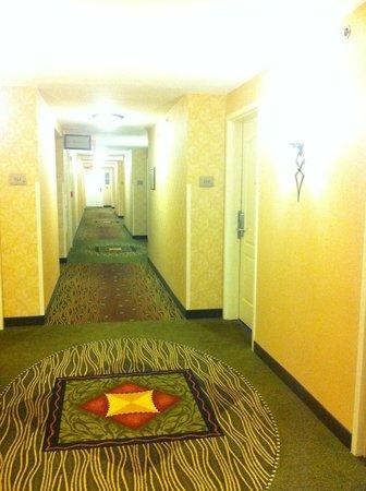 Hilton Garden Inn Norwalk: Even the Hallways was nice