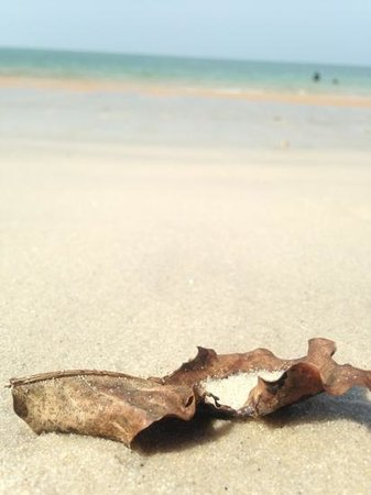 Pasir Tengkorak Beach: love the white sand