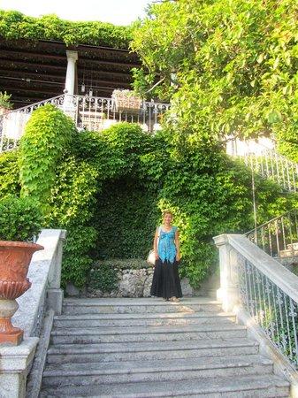 Hotel Villa Cipressi: Garden stairs