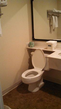 Travelodge Terre Haute: bathroom