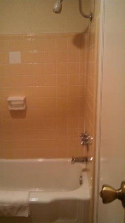 Travelodge Terre Haute: shower