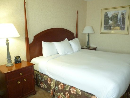 Hilton Columbus at Easton: cama