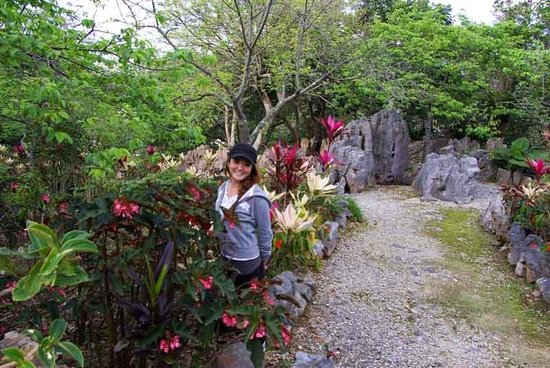 Natural Stone Garden: Lino Poses With Begonia