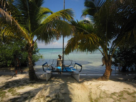 Hatchet Caye Resort: Rasta with Hobie Cat