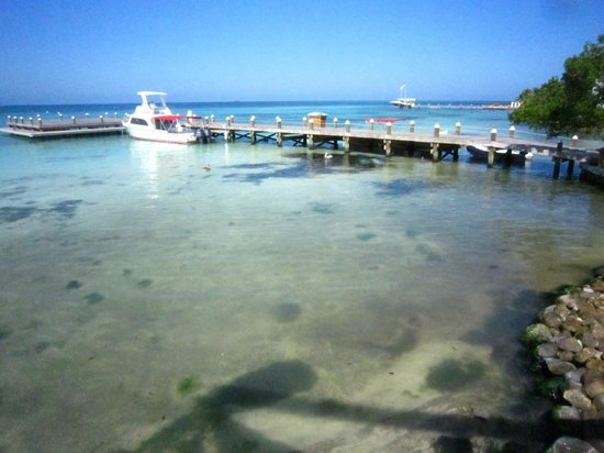 Hatchet Caye Resort: Boat Dock from restaurant