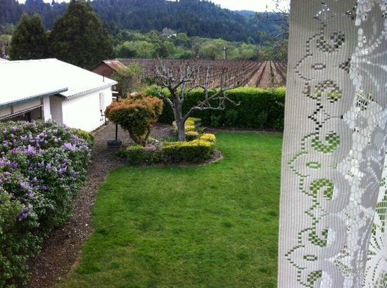 Irish Rose Inn: Lovely view from our room looking over Dry Creek Valley - Michaels room