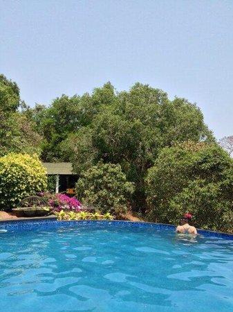 Capella: flowers, beer & an infinity pool