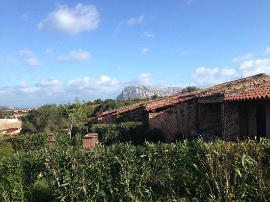 Residence Baia Salinedda: Vue sur les autres habitations de la résidence