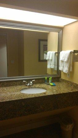 Allure Resort International Drive Orlando: Mirror and Sink