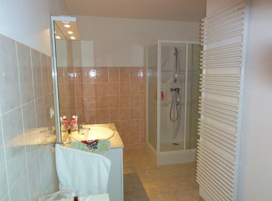 "Residence Aigue Marine: Salle de bain ""nickel"",aucune trace de moisissures."