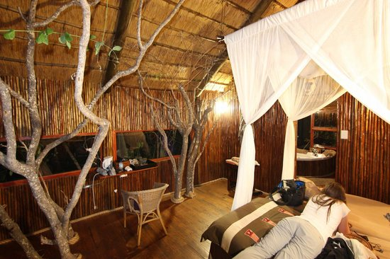 Pezulu Tree House Game Lodge: Una delle due camere