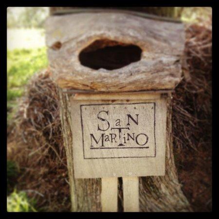 Fattoria San Martino: Benvenuti