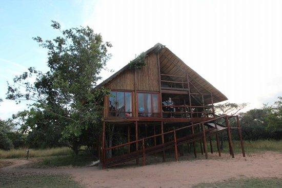 Pezulu Tree House Game Lodge: Vista della camera da fuori