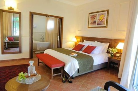 Kfar Blum, Israel: boutique room
