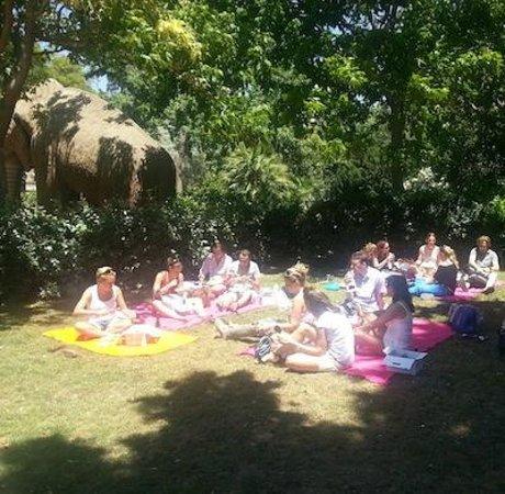 Hola! Bikes & Tours -  Day Tours : Enjoy a picnic at Parque Ciutadella, Barcelona