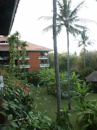 Melia Bali: View from the room