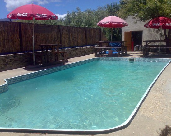 Barrydale Backpackers & Dung Beetle Bar : The swimming pool (salt water)