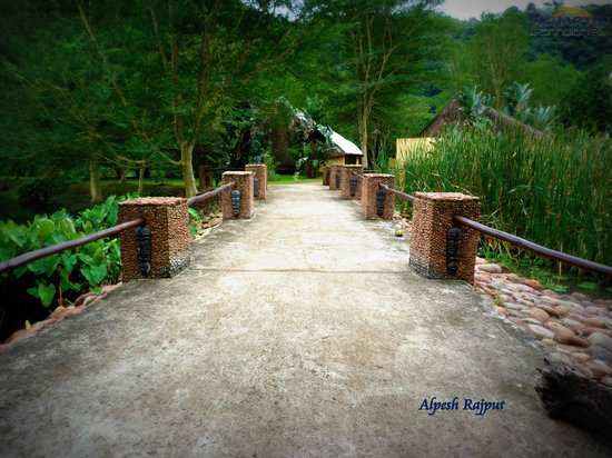 Wellvale Private River Resort: Path to the Chalets between the ponds