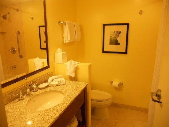 Holiday Inn Orlando – Disney Springs Area: Baño