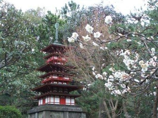 Chigasaki, Japonia: 三重の塔(薬師寺型)