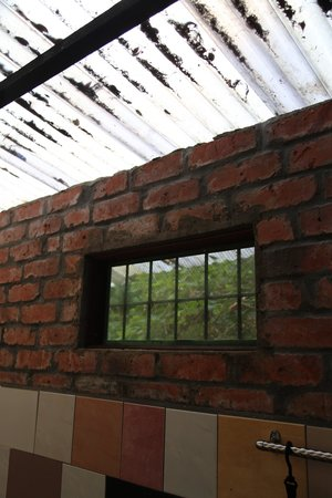 Tropicana Lodge: The bathroom window (private room) with a net , though there is a gap between the roof and the w