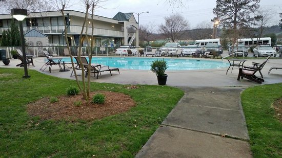 Chapel Hill University Inn: Pool